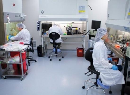 Con modelos 3D de las malformaciones cerebrales ensayan operaciones en niños